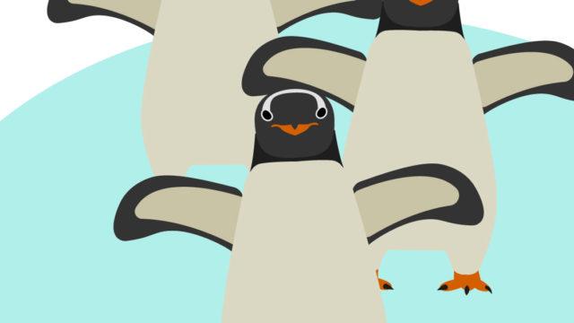 ぱんだデザイナー:ペンギン